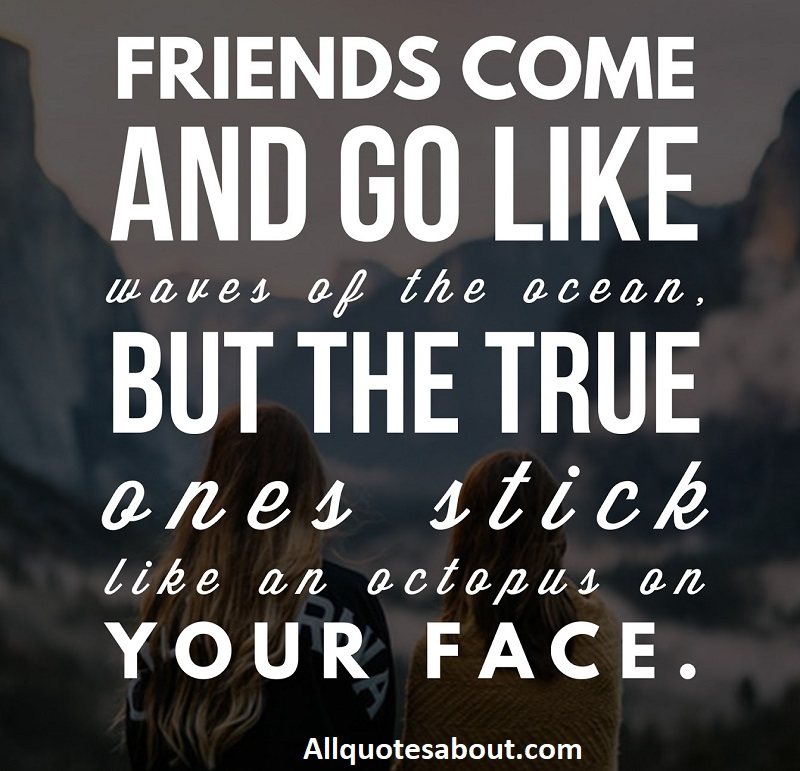 1000 Friendship Quotes And Sayings